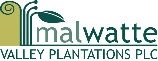 MALWATTE VALLEY PLANTATIONS PLC's Company logo